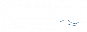 Human 4 workplace culture change specialist logo for web footer