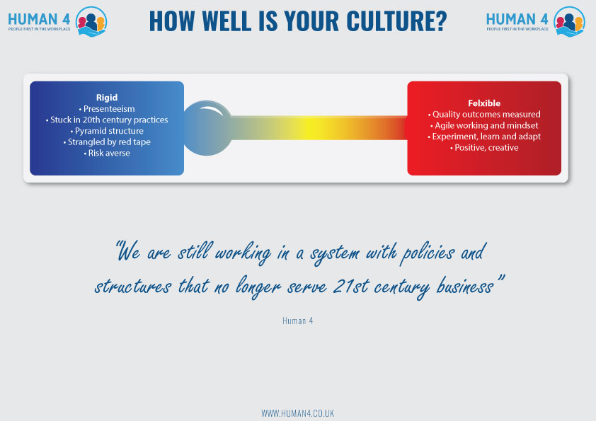 Human 4 How Well Is Your Culture Infographic Page 3